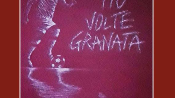 """""""110 volte granata"""": un libro che vuole tenere alto il nome del """"Toro"""" in Italia e nel mondo."""