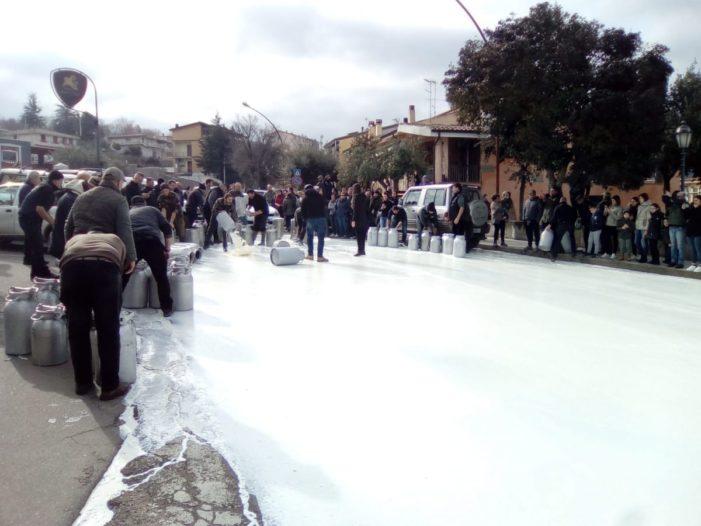La guerra del latte e le elezioni Regionali in Sardegna.