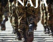 La Camera approva la riforma del servizio militare con 453 sì, arriva la mini Naja.