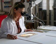 Leonardo da Vinci il genio toscano era ambidestro: lo uno studio sul primo disegno.