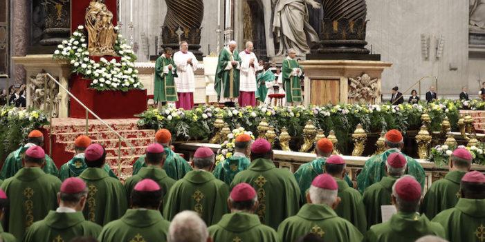 Si è concluso in Città del Vaticano – a Roma – il Sinodo straordinario convocato sui problemi dell'Amazzonia.