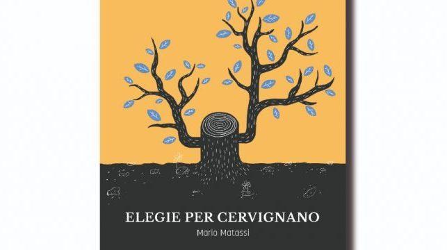 """Nella spendida cornice della """"Villa al Trovatore"""" si è svolta la serata di presentazione del progetto """"Elegie per Cervignano"""", l'apprezzata opera del cervignanese Prof. Mario Matassi"""